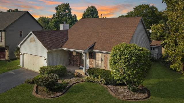 1088 Clover Hill Court, Elgin, IL 60120 (MLS #11224659) :: John Lyons Real Estate