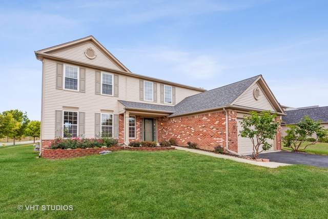 195 S Cranberry Street, Bolingbrook, IL 60490 (MLS #11224719) :: Angela Walker Homes Real Estate Group