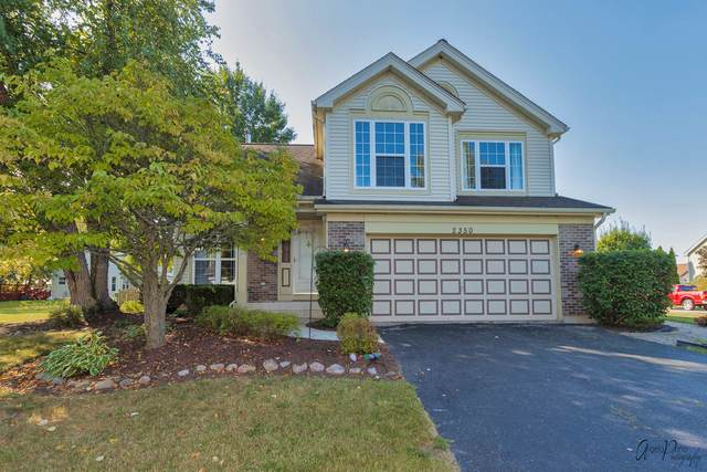 2350 Applewood Lane, Woodstock, IL 60098 (MLS #11224766) :: Lewke Partners - Keller Williams Success Realty