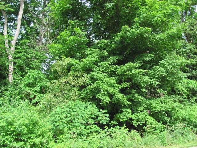 1833 Indian Trail, Kankakee, IL 60901 (MLS #11225066) :: Lewke Partners - Keller Williams Success Realty