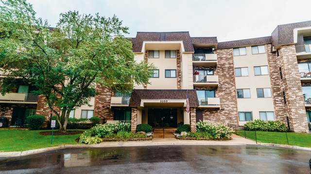 3350 N Carriageway Drive #316, Arlington Heights, IL 60004 (MLS #11225185) :: Touchstone Group