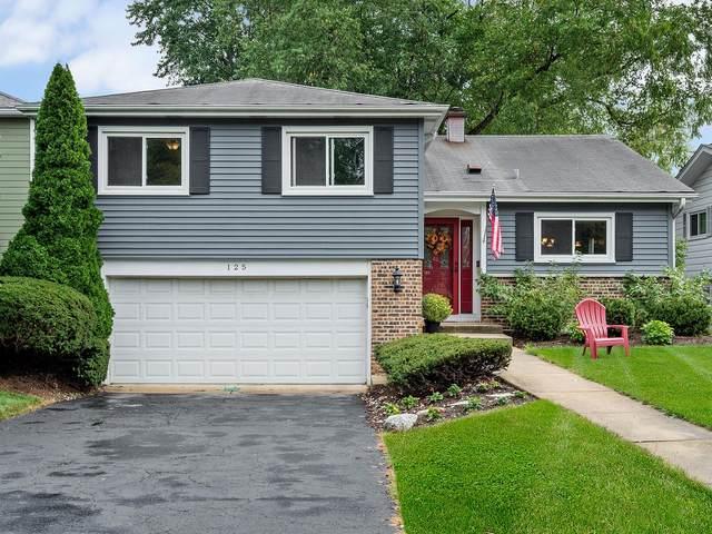 125 S Milton Avenue, Glen Ellyn, IL 60137 (MLS #11225253) :: The Wexler Group at Keller Williams Preferred Realty