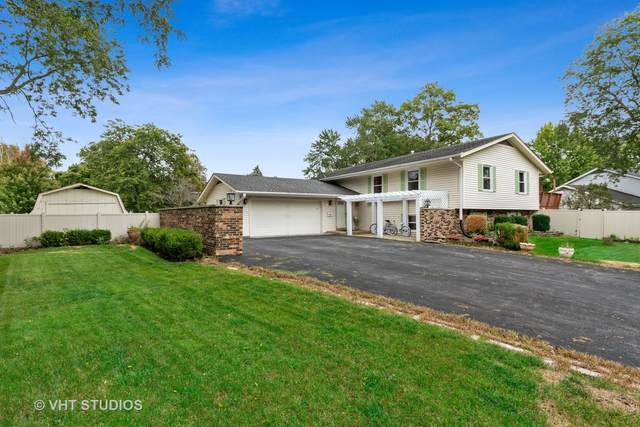 1110 S 13th Street, St. Charles, IL 60174 (MLS #11225260) :: The Wexler Group at Keller Williams Preferred Realty