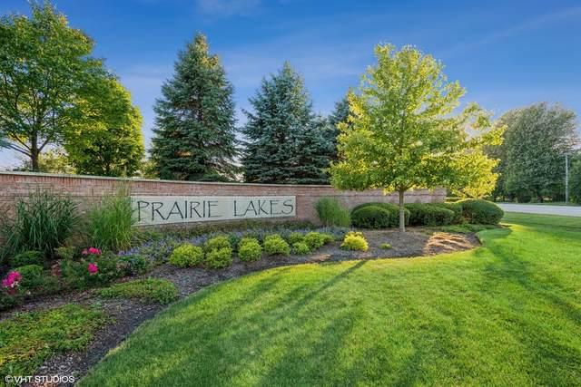 5N285 Prairie Lakes Boulevard, St. Charles, IL 60175 (MLS #11225380) :: The Wexler Group at Keller Williams Preferred Realty