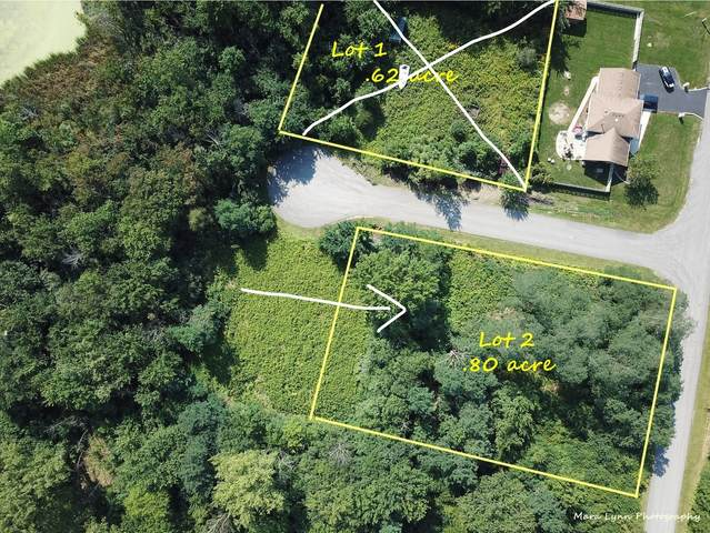 Lot 2 Dickens & Alma Avenue, Lombard, IL 60148 (MLS #11225402) :: Angela Walker Homes Real Estate Group