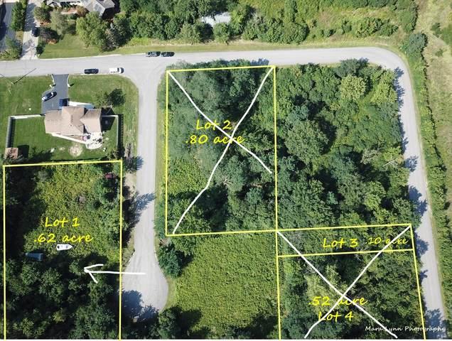 Lot 1 Alma Avenue, Lombard, IL 60148 (MLS #11225407) :: Angela Walker Homes Real Estate Group