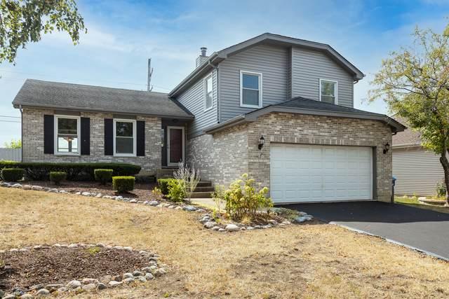 4568 Basswood Drive, Lisle, IL 60532 (MLS #11225467) :: The Dena Furlow Team - Keller Williams Realty