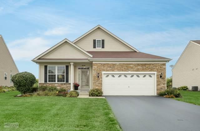 836 Colchester Drive, Oswego, IL 60543 (MLS #11225523) :: John Lyons Real Estate