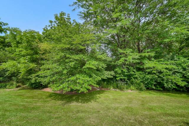 8N435 Sunny Hill Circle, Campton Hills, IL 60124 (MLS #11225724) :: The Wexler Group at Keller Williams Preferred Realty