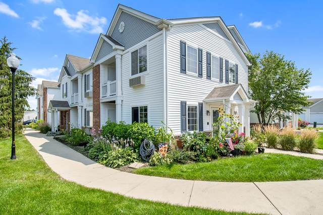 234 Bertram Drive E, Yorkville, IL 60560 (MLS #11225782) :: Carolyn and Hillary Homes