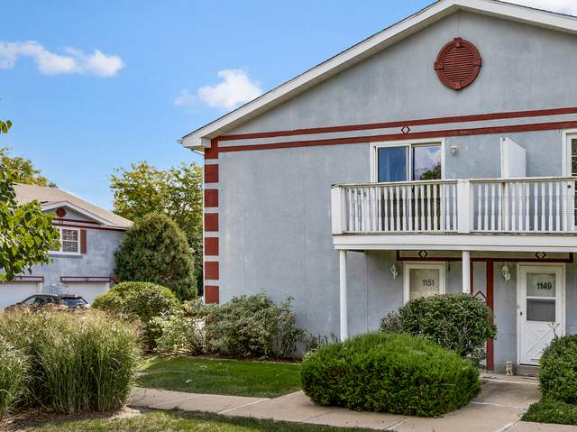 1151 Greenwood Circle #1151, Woodstock, IL 60098 (MLS #11225811) :: Lewke Partners - Keller Williams Success Realty