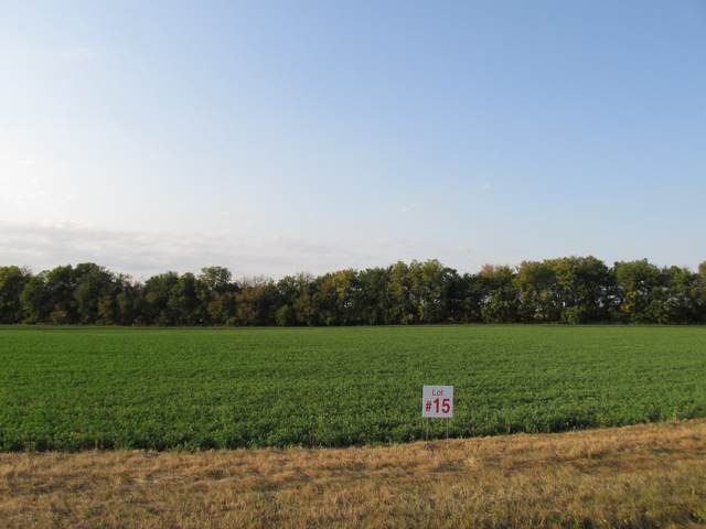 3468 Amherst Lane, Lee, IL 60530 (MLS #11226007) :: Littlefield Group