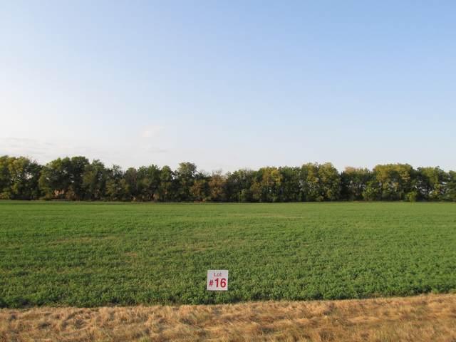 3466 Amherst Lane, Lee, IL 60530 (MLS #11226011) :: Littlefield Group