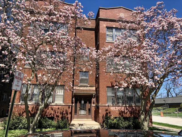 37 W 14th Place, Chicago Heights, IL 60411 (MLS #11226122) :: The Spaniak Team
