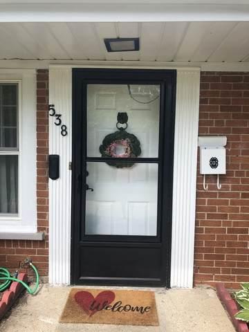 538 W Palatine Road, Palatine, IL 60067 (MLS #11226361) :: Lewke Partners - Keller Williams Success Realty