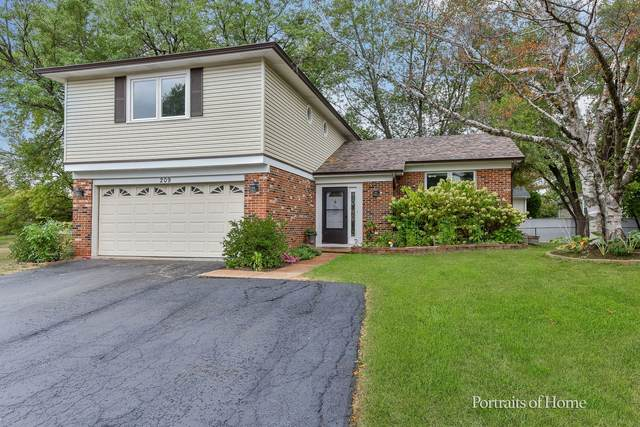 209 Chase Court, Bolingbrook, IL 60440 (MLS #11226367) :: John Lyons Real Estate