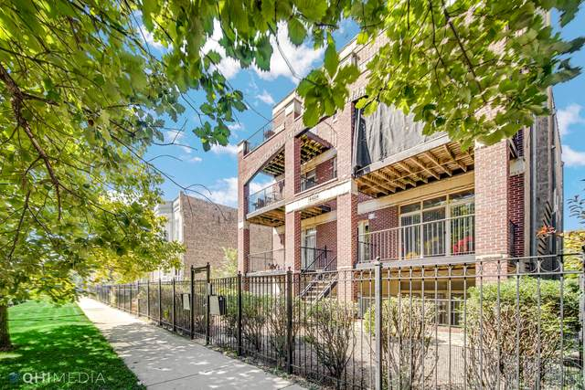 4424 S Indiana Avenue 3N, Chicago, IL 60653 (MLS #11226593) :: BN Homes Group