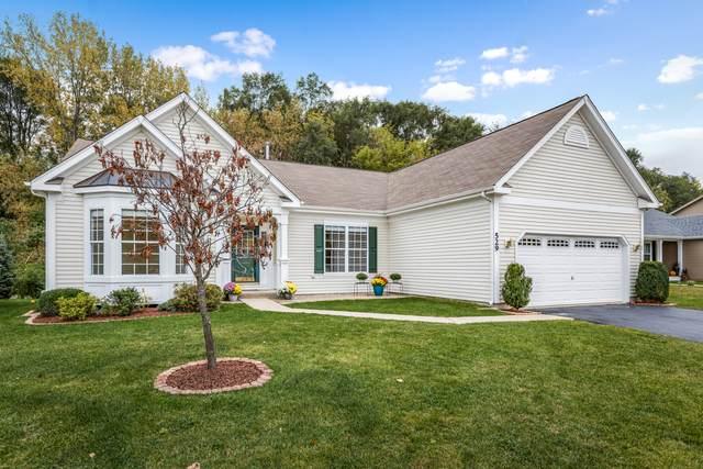 529 Deer Run, Fox Lake, IL 60020 (MLS #11226888) :: John Lyons Real Estate