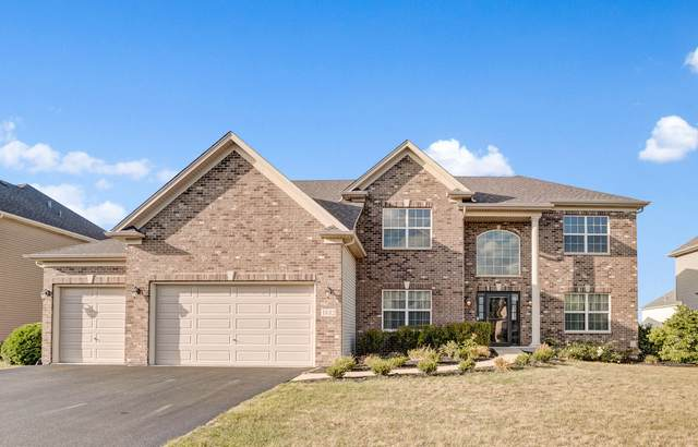 1882 Raes Creek Drive, Bolingbrook, IL 60490 (MLS #11226992) :: Angela Walker Homes Real Estate Group
