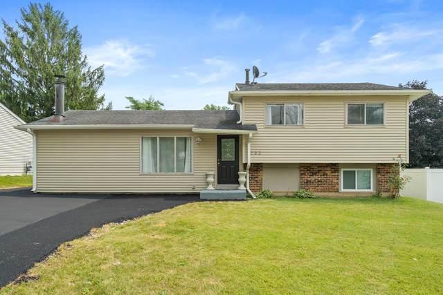 232 Creekside Drive, Bolingbrook, IL 60440 (MLS #11226996) :: Lewke Partners - Keller Williams Success Realty