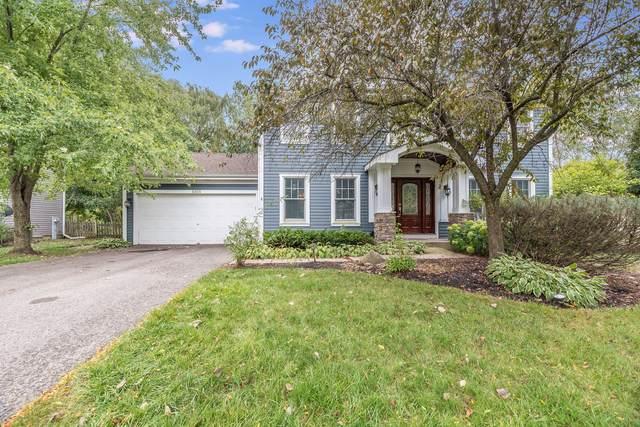 6815 Foxworth Lane, Gurnee, IL 60031 (MLS #11227066) :: The Wexler Group at Keller Williams Preferred Realty