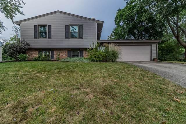 1102 Harmon Street, Urbana, IL 61801 (MLS #11227467) :: Littlefield Group