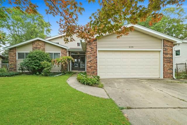 225 Sumac Lane, Schaumburg, IL 60193 (MLS #11227521) :: Carolyn and Hillary Homes