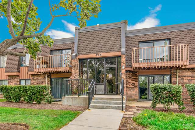 714 Tullamore Court 2D, Schaumburg, IL 60193 (MLS #11227547) :: Carolyn and Hillary Homes