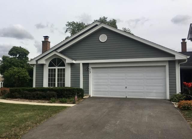 13 Sarahs Grove Lane, Schaumburg, IL 60193 (MLS #11227599) :: Carolyn and Hillary Homes