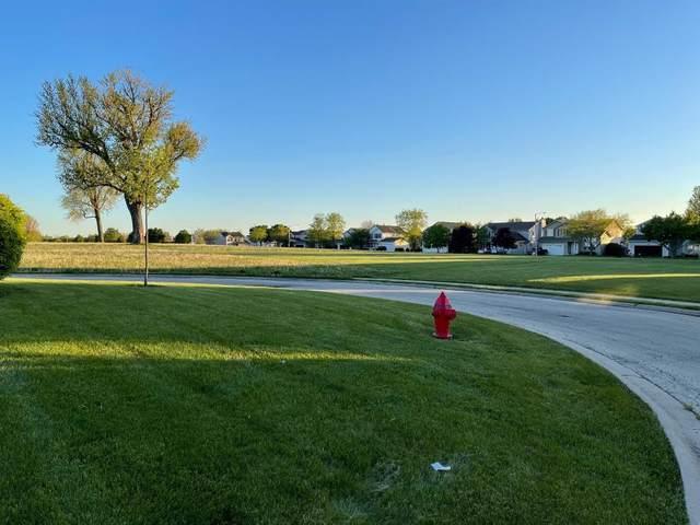 2615 Cedar Breaks Court, Plainfield, IL 60586 (MLS #11228084) :: Carolyn and Hillary Homes