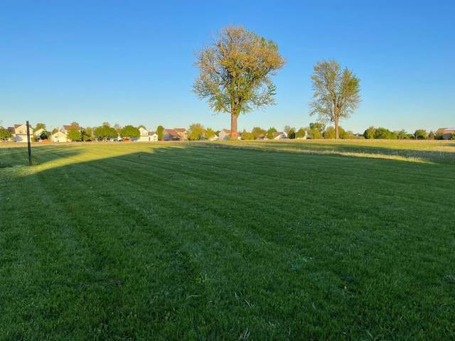 2606 Vision Avenue, Plainfield, IL 60586 (MLS #11228086) :: The Dena Furlow Team - Keller Williams Realty