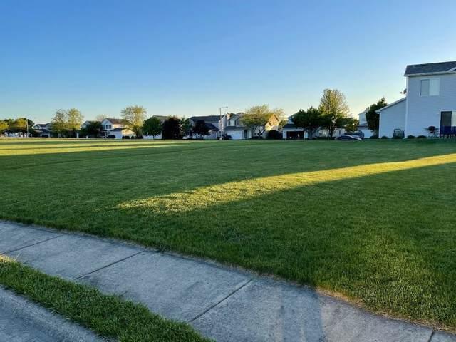 2617 Cedar Breaks Court, Plainfield, IL 60586 (MLS #11228087) :: Carolyn and Hillary Homes