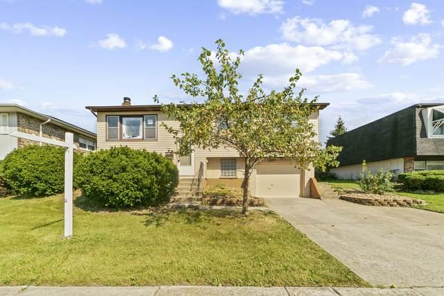 20019 Monterey Avenue, Lynwood, IL 60411 (MLS #11228412) :: Littlefield Group