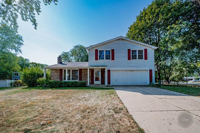 324 Beech Court, Naperville, IL 60540 (MLS #11228464) :: Carolyn and Hillary Homes