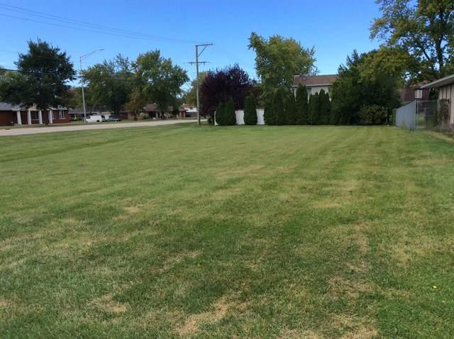 801 Sheila Drive, Joliet, IL 60435 (MLS #11228472) :: Carolyn and Hillary Homes