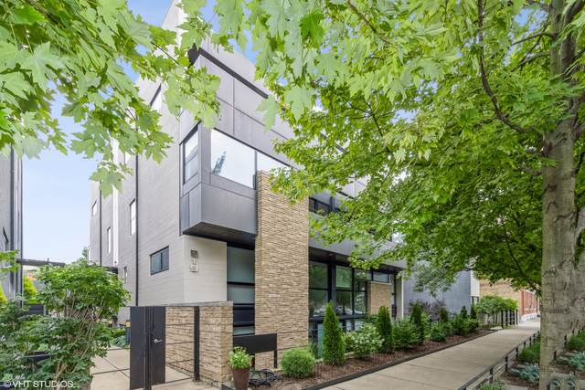919 N Wolcott Avenue #203, Chicago, IL 60622 (MLS #11228476) :: BN Homes Group