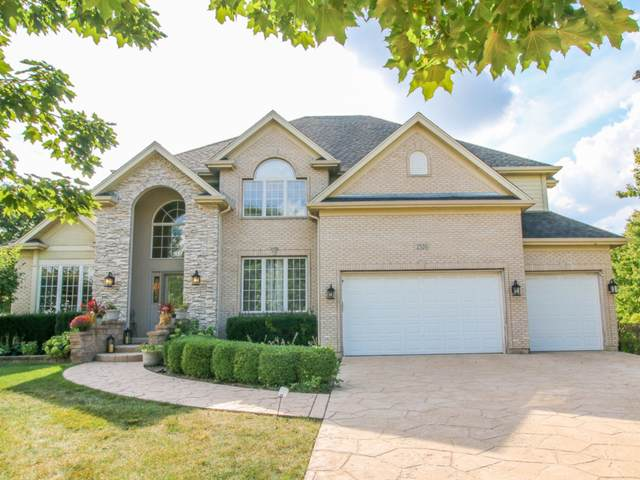 2520 Canfield Court, Naperville, IL 60564 (MLS #11228542) :: The Dena Furlow Team - Keller Williams Realty