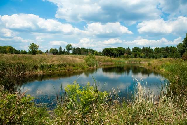 1 Templeton Drive, Oak Brook, IL 60623 (MLS #11228610) :: Angela Walker Homes Real Estate Group