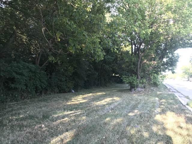 1196 S Brockway Street, Palatine, IL 60067 (MLS #11228783) :: Littlefield Group