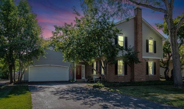 337 Stock Port Lane, Schaumburg, IL 60193 (MLS #11228947) :: BN Homes Group