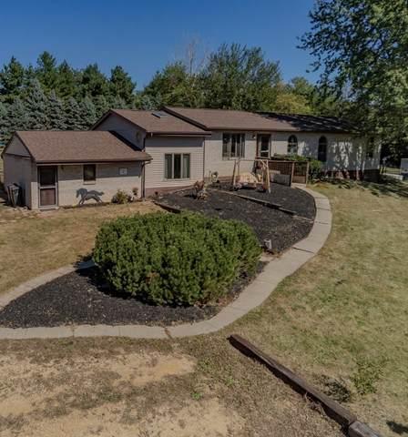 9171 N Leaf River Road, Leaf River, IL 61047 (MLS #11228997) :: Littlefield Group