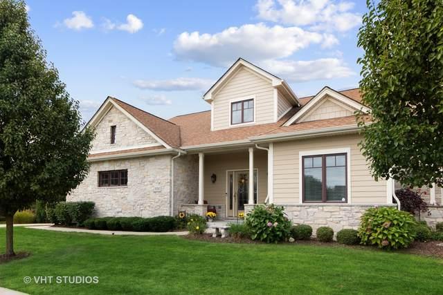 9391 Bull Rush Circle, Frankfort, IL 60423 (MLS #11229090) :: John Lyons Real Estate