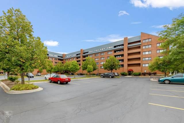 101 Summit Avenue #606, Park Ridge, IL 60068 (MLS #11229338) :: John Lyons Real Estate