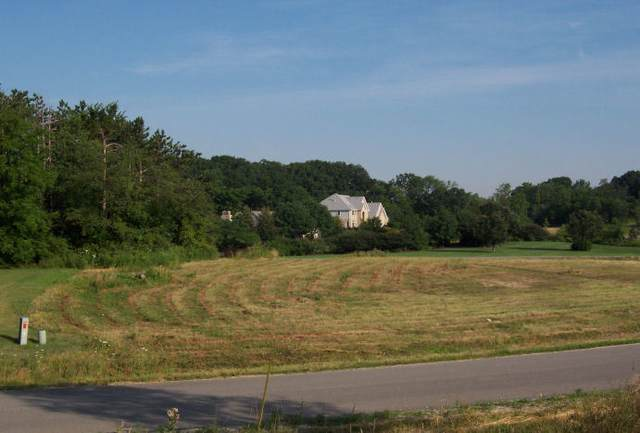 Lot 17 Pine Hill Drive, Homer Glen, IL 60491 (MLS #11229339) :: Littlefield Group