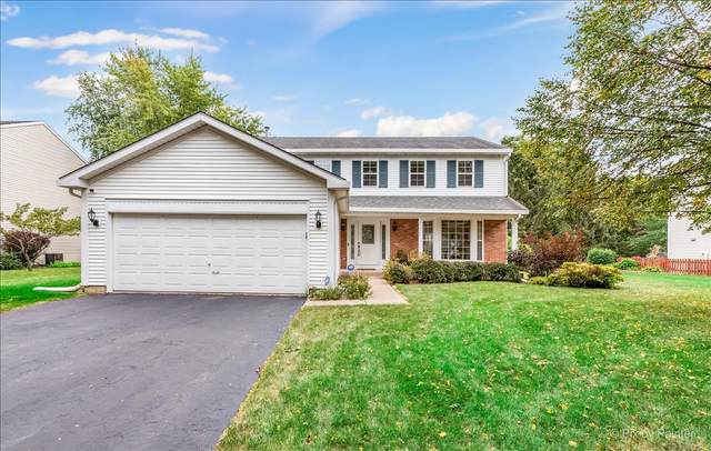 49 Mohawk Street, Cary, IL 60013 (MLS #11229342) :: The Wexler Group at Keller Williams Preferred Realty