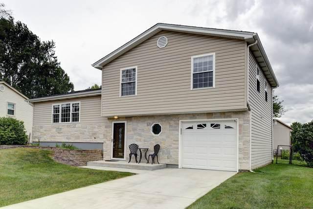 1542 Idaho Place, Elk Grove Village, IL 60007 (MLS #11229347) :: BN Homes Group