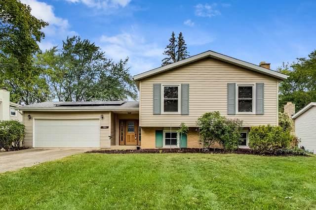 706 Maple Lane, Darien, IL 60561 (MLS #11229427) :: BN Homes Group