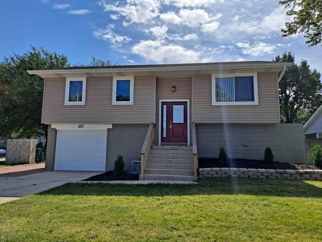 601 W Romeo Road, Romeoville, IL 60446 (MLS #11229517) :: Angela Walker Homes Real Estate Group