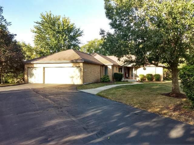 26223 W Highland Drive, Channahon, IL 60410 (MLS #11229598) :: John Lyons Real Estate