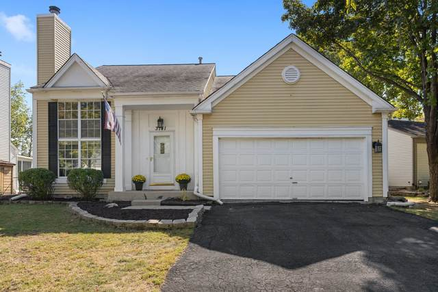 3141 Medford Court, Aurora, IL 60504 (MLS #11229652) :: John Lyons Real Estate
